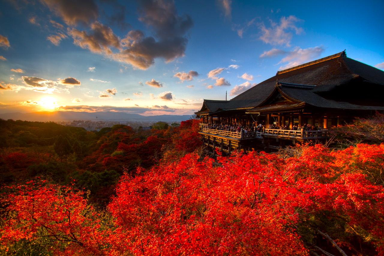 京都の人気紅葉スポット